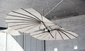 Otto Lilienthal's hang glider (replica)